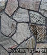 łyszczyk marmurowy
