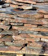 łyszczyk marmurowy płyty